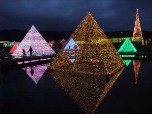 光のピラミッド あしかがフラワーパーク