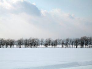 オール電化の暖房器具だけでも北海道の冬を過ごせる?