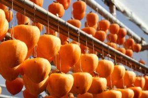 基本の干し柿の作り方と適した時期