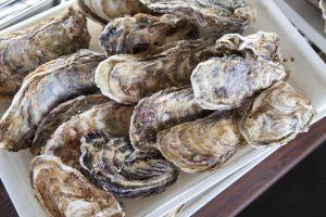 牡蠣は完全栄養食!?鍋でも美味しい牡蠣の栄養とは?